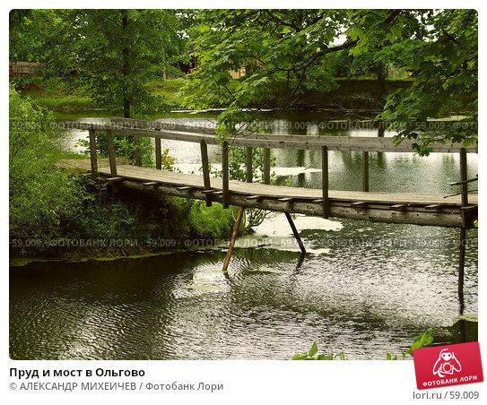 Пруд и мост в Ольгово, фото № 59009, снято 17 июня 2006 г. (c) АЛЕКСАНДР МИХЕИЧЕВ / Фотобанк Лори