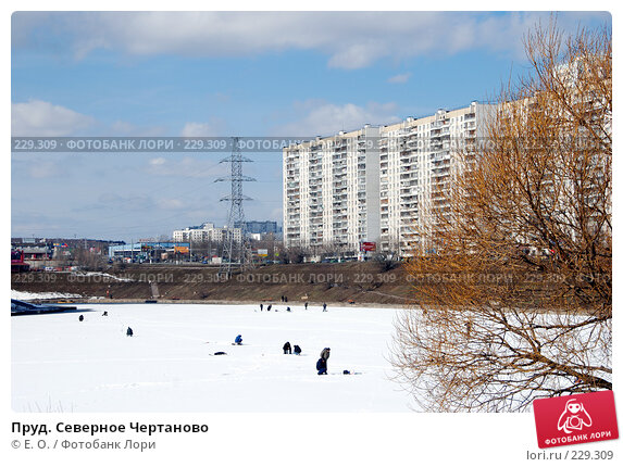 Купить «Пруд. Северное Чертаново», фото № 229309, снято 22 марта 2008 г. (c) Екатерина Овсянникова / Фотобанк Лори