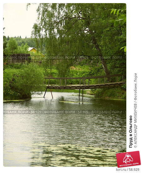 Пруд в Ольгово, фото № 58929, снято 17 июня 2006 г. (c) АЛЕКСАНДР МИХЕИЧЕВ / Фотобанк Лори