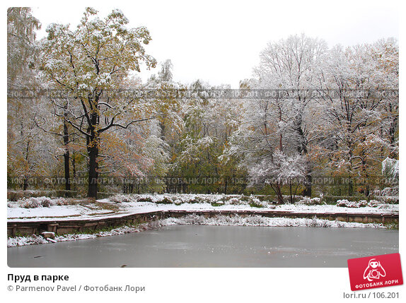 Пруд в парке, фото № 106201, снято 16 октября 2007 г. (c) Parmenov Pavel / Фотобанк Лори
