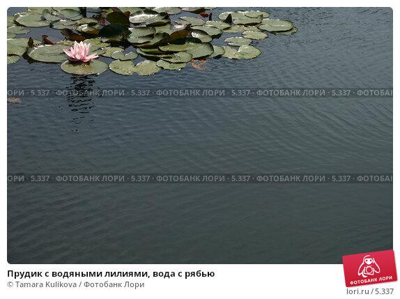 Прудик с водяными лилиями, вода с рябью, фото № 5337, снято 1 июля 2006 г. (c) Tamara Kulikova / Фотобанк Лори