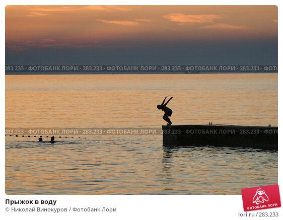 Прыжок в воду, эксклюзивное фото № 283233, снято 6 июля 2017 г. (c) Николай Винокуров / Фотобанк Лори