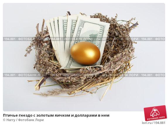 Птичье гнездо с золотым яичком и долларами в нем, фото № 194881, снято 3 октября 2007 г. (c) Harry / Фотобанк Лори