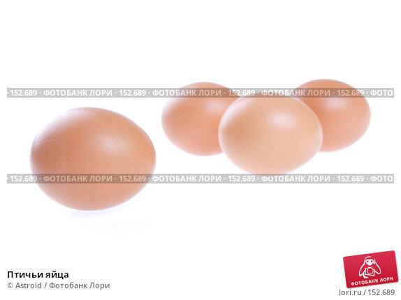 Птичьи яйца, фото № 152689, снято 5 января 2007 г. (c) Astroid / Фотобанк Лори
