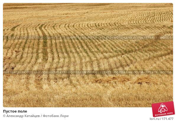 Пустое поле, фото № 171477, снято 19 августа 2007 г. (c) Александр Катайцев / Фотобанк Лори