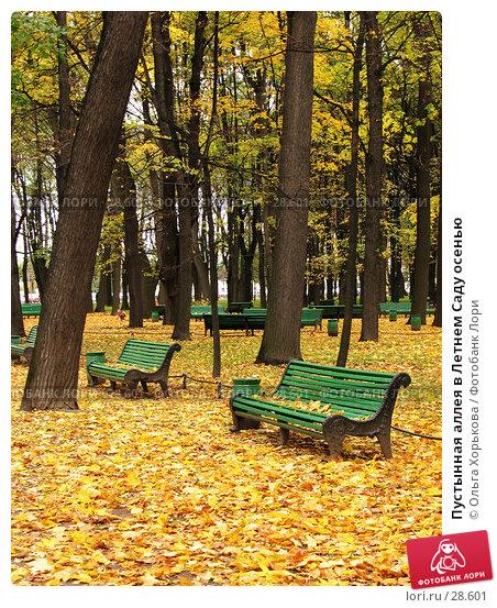 Пустынная аллея в Летнем Саду осенью, фото № 28601, снято 15 октября 2006 г. (c) Ольга Хорькова / Фотобанк Лори