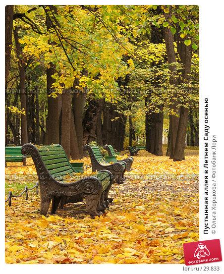 Пустынная аллея в Летнем Саду осенью, фото № 29833, снято 15 октября 2006 г. (c) Ольга Хорькова / Фотобанк Лори