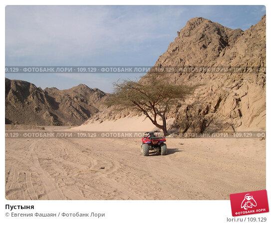 Пустыня, фото № 109129, снято 11 ноября 2006 г. (c) Евгения Фашаян / Фотобанк Лори