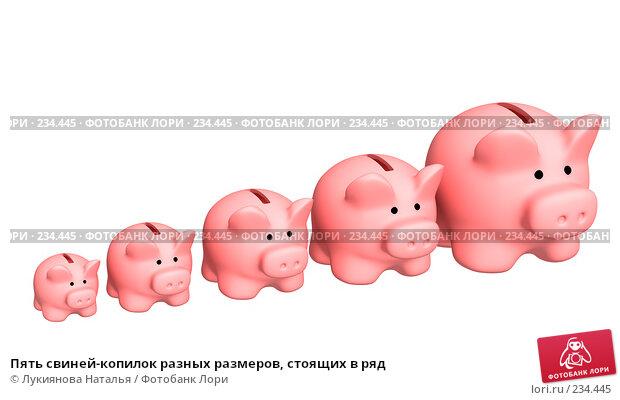 Пять свиней-копилок разных размеров, стоящих в ряд, иллюстрация № 234445 (c) Лукиянова Наталья / Фотобанк Лори