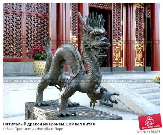 Пятипалый дракон из бронзы. Символ Китая, фото № 156093, снято 24 апреля 2017 г. (c) Вера Тропынина / Фотобанк Лори