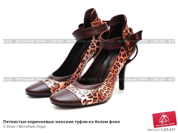 Купить «Пятнистые коричневые женские туфли на белом фоне», фото № 3285837, снято 23 декабря 2006 г. (c) Elnur / Фотобанк Лори