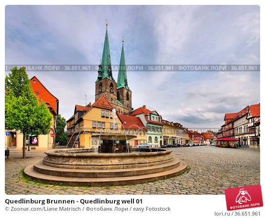 Quedlinburg Brunnen - Quedlinburg well 01. Стоковое фото, фотограф Zoonar.com/Liane Matrisch / easy Fotostock / Фотобанк Лори