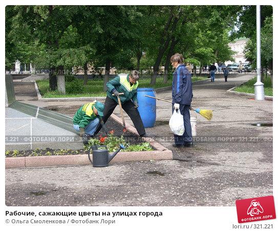 Рабочие, сажающие цветы на улицах города, фото № 321221, снято 4 июня 2008 г. (c) Ольга Смоленкова / Фотобанк Лори
