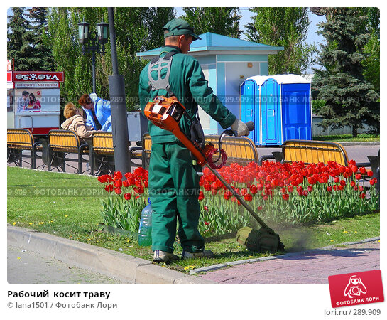 Рабочий  косит траву, эксклюзивное фото № 289909, снято 8 мая 2008 г. (c) lana1501 / Фотобанк Лори