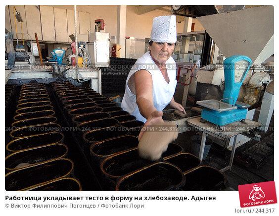 Купить «Работница укладывает тесто в форму на хлебозаводе. Адыгея», фото № 244317, снято 14 сентября 2006 г. (c) Виктор Филиппович Погонцев / Фотобанк Лори