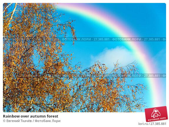 Купить «Rainbow over autumn forest», фото № 27385881, снято 11 декабря 2016 г. (c) Евгений Ткачёв / Фотобанк Лори