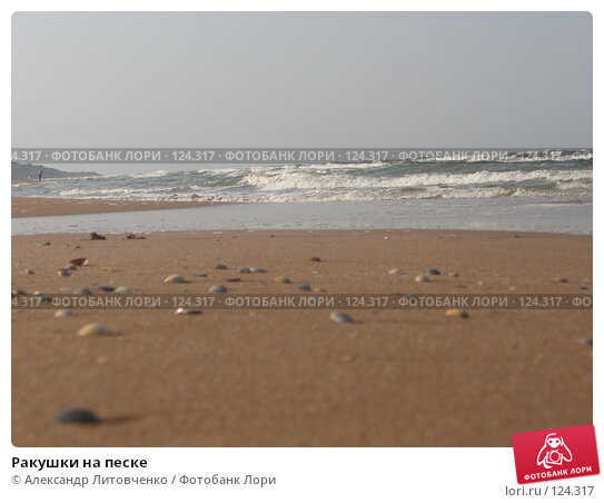 Ракушки на песке, фото № 124317, снято 5 сентября 2007 г. (c) Александр Литовченко / Фотобанк Лори