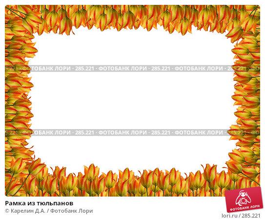 Рамка из тюльпанов, иллюстрация № 285221 (c) Карелин Д.А. / Фотобанк Лори