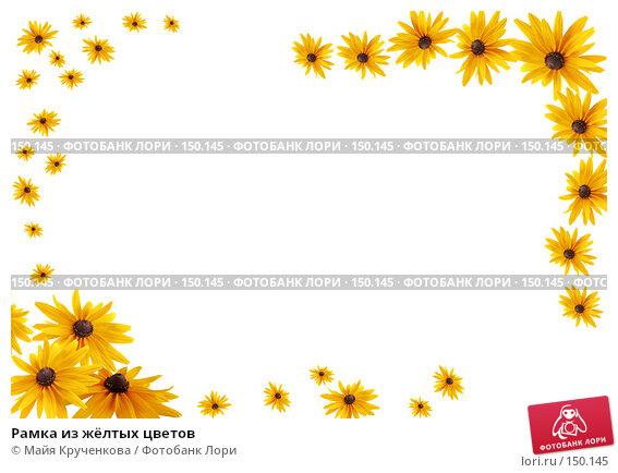 Рамка из жёлтых цветов, фото № 150145, снято 21 июля 2007 г. (c) Майя Крученкова / Фотобанк Лори