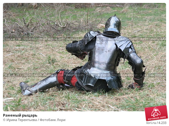 Раненый рыцарь, эксклюзивное фото № 4233, снято 8 мая 2006 г. (c) Ирина Терентьева / Фотобанк Лори