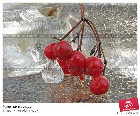 Купить «Ранетки на льду», фото № 754453, снято 16 ноября 2008 г. (c) Иван / Фотобанк Лори