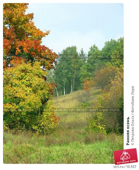 Ранняя осень, фото № 10557, снято 5 октября 2006 г. (c) Петрова Ольга / Фотобанк Лори