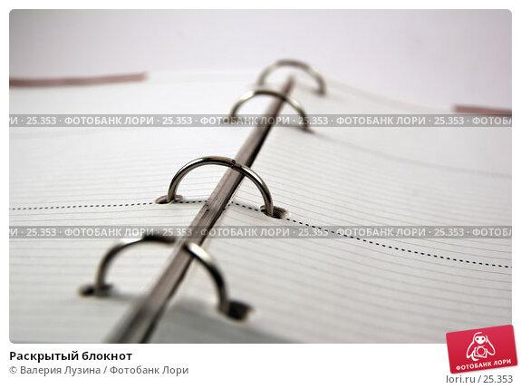 Раскрытый блокнот, фото № 25353, снято 20 марта 2007 г. (c) Валерия Потапова / Фотобанк Лори