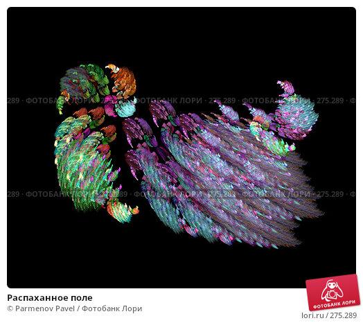 Купить «Распаханное поле», иллюстрация № 275289 (c) Parmenov Pavel / Фотобанк Лори