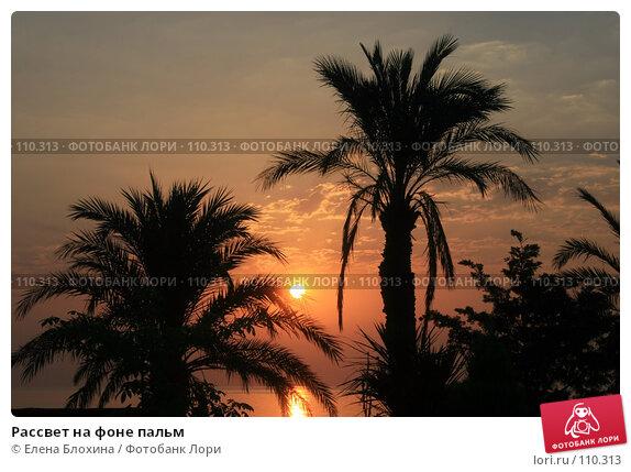 Рассвет на фоне пальм, фото № 110313, снято 14 августа 2007 г. (c) Елена Блохина / Фотобанк Лори