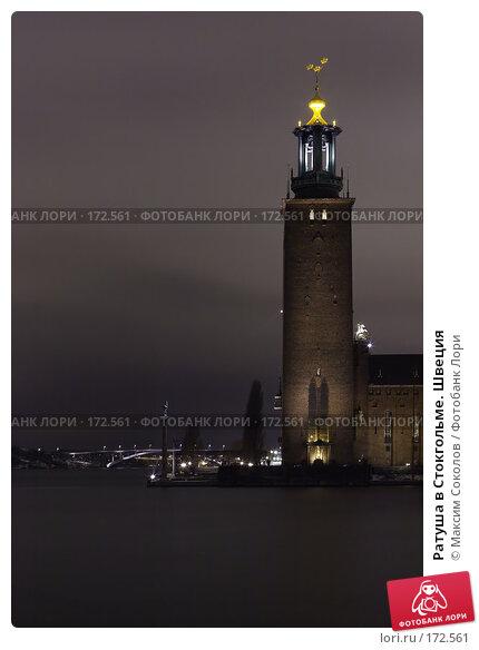 Ратуша в Стокгольме. Швеция, фото № 172561, снято 5 января 2008 г. (c) Максим Соколов / Фотобанк Лори