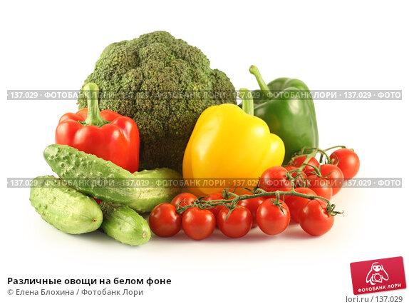 Различные овощи на белом фоне, фото № 137029, снято 24 июля 2007 г. (c) Елена Блохина / Фотобанк Лори