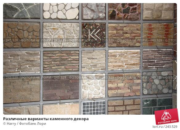 Купить «Различные варианты каменного декора», фото № 243529, снято 16 июня 2005 г. (c) Harry / Фотобанк Лори
