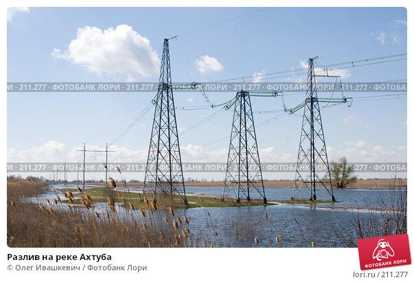 Разлив на реке Ахтуба, фото № 211277, снято 22 апреля 2007 г. (c) Олег Ивашкевич / Фотобанк Лори