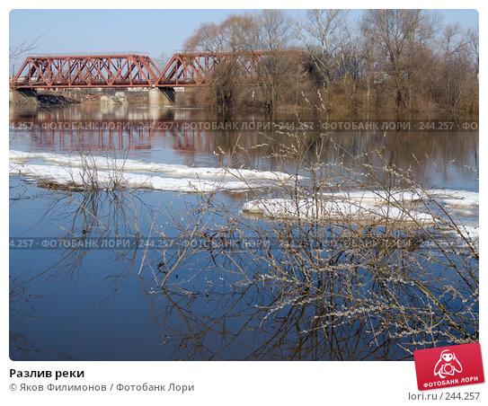 Купить «Разлив реки», фото № 244257, снято 29 марта 2008 г. (c) Яков Филимонов / Фотобанк Лори