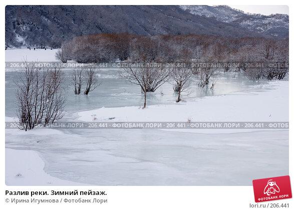 Разлив реки. Зимний пейзаж., фото № 206441, снято 2 января 2008 г. (c) Ирина Игумнова / Фотобанк Лори