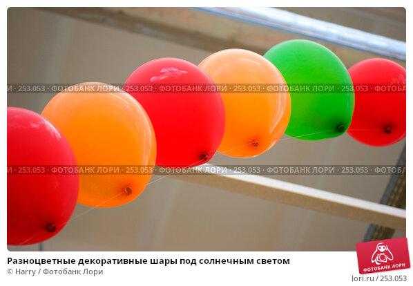 Разноцветные декоративные шары под солнечным светом, фото № 253053, снято 29 марта 2008 г. (c) Harry / Фотобанк Лори