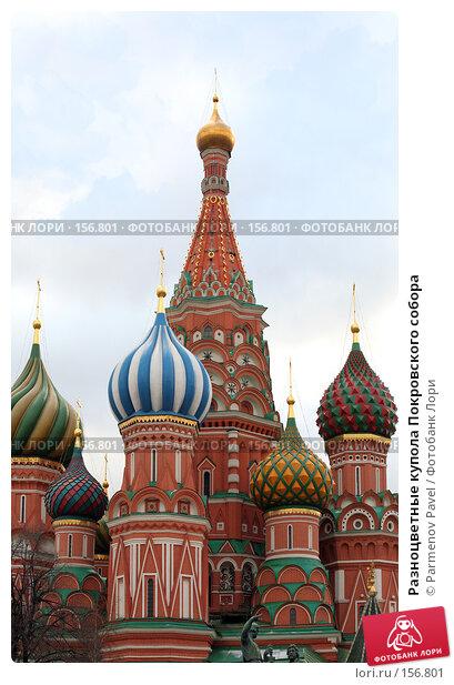 Разноцветные купола Покровского собора, фото № 156801, снято 21 декабря 2007 г. (c) Parmenov Pavel / Фотобанк Лори
