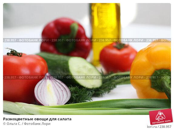 Купить «Разноцветные овощи для салата», фото № 238957, снято 31 марта 2008 г. (c) Ольга С. / Фотобанк Лори