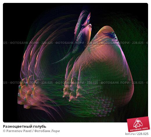 Разноцветный голубь, иллюстрация № 228025 (c) Parmenov Pavel / Фотобанк Лори