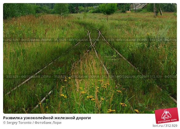 Развилка узкоколейной железной дороги, фото № 312929, снято 1 января 2004 г. (c) Sergey Toronto / Фотобанк Лори