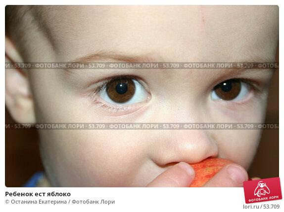 Купить «Ребенок ест яблоко», фото № 53709, снято 2 марта 2005 г. (c) Останина Екатерина / Фотобанк Лори