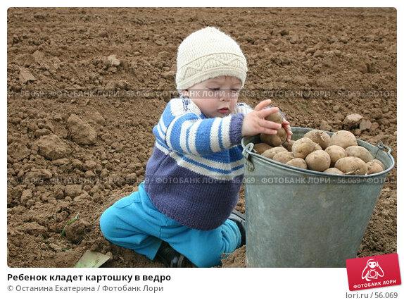 Ребенок кладет картошку в ведро, фото № 56069, снято 14 мая 2004 г. (c) Останина Екатерина / Фотобанк Лори