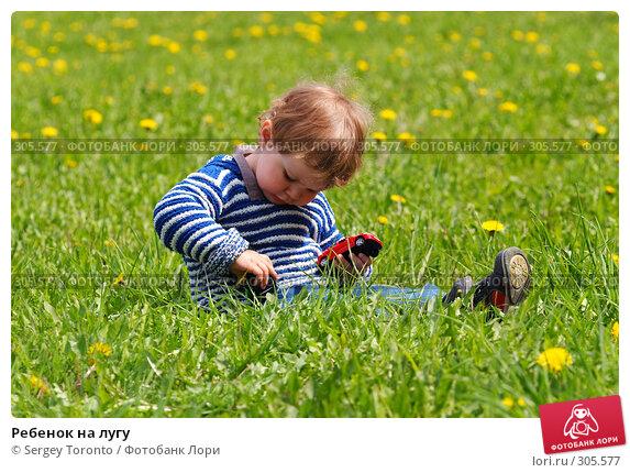Ребенок на лугу, фото № 305577, снято 11 мая 2008 г. (c) Sergey Toronto / Фотобанк Лори