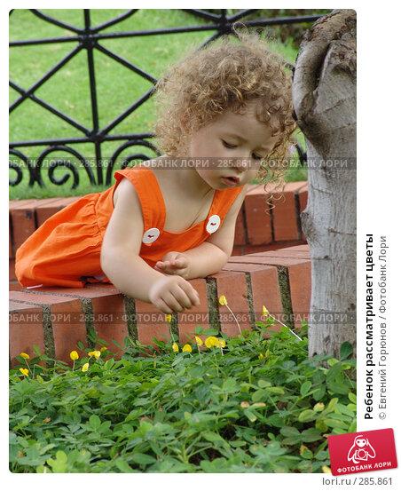 Ребенок рассматривает цветы, фото № 285861, снято 23 марта 2008 г. (c) Евгений Горюнов / Фотобанк Лори