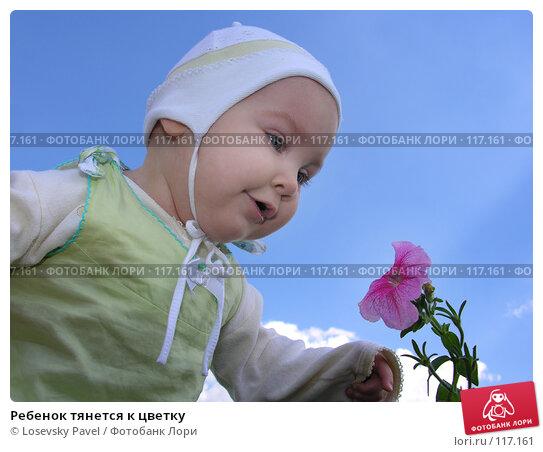Ребенок тянется к цветку, фото № 117161, снято 16 августа 2005 г. (c) Losevsky Pavel / Фотобанк Лори