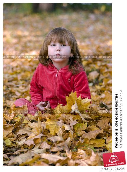 Ребенок в кленовой листве, фото № 121205, снято 1 октября 2007 г. (c) Ольга Сапегина / Фотобанк Лори