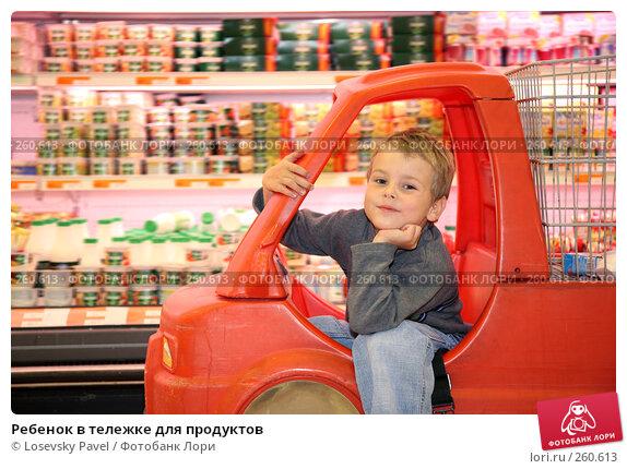 Купить «Ребенок в тележке для продуктов», фото № 260613, снято 23 ноября 2017 г. (c) Losevsky Pavel / Фотобанк Лори