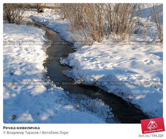 Речка-невеличка, фото № 194329, снято 4 января 2008 г. (c) Владимир Тарасов / Фотобанк Лори