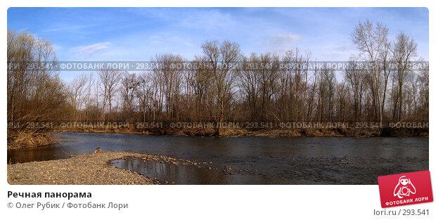 Речная панорама, фото № 293541, снято 11 апреля 2008 г. (c) Олег Рубик / Фотобанк Лори