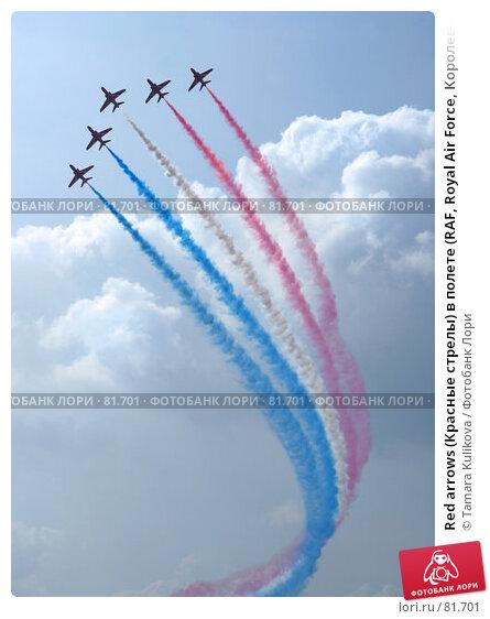 Red arrows (Красные стрелы) в полете (RAF, Royal Air Force, Королевские военно-воздушные войска), фото № 81701, снято 9 сентября 2007 г. (c) Tamara Kulikova / Фотобанк Лори